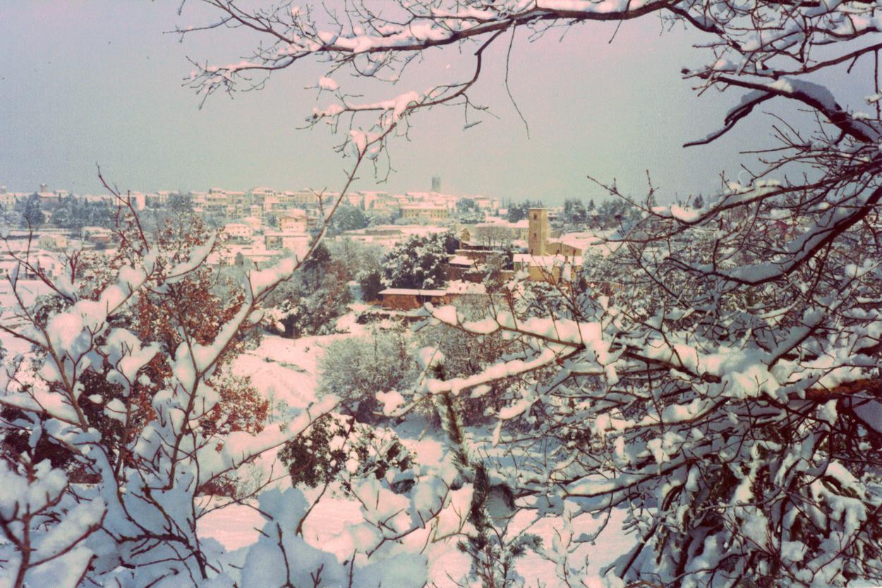Castellterçol Febrer 1983